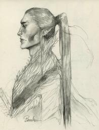 Elf Warrior Sketch